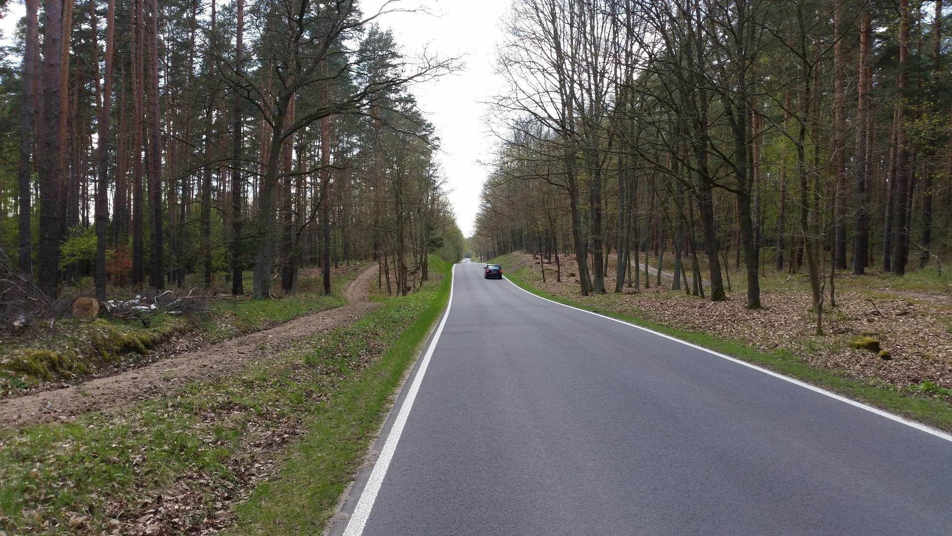 Gemeindestraße zwischen Groß Schönebeck und Eichhorst